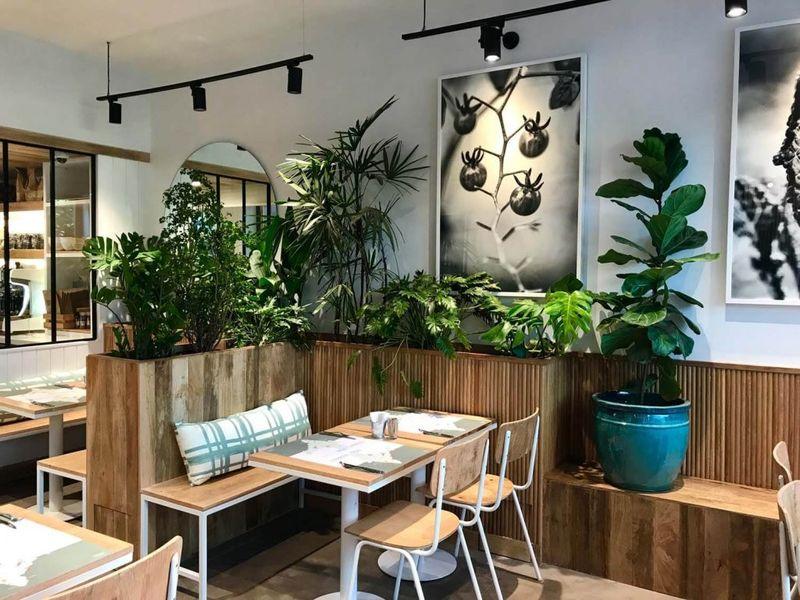 Contemporary Organic Restaurants