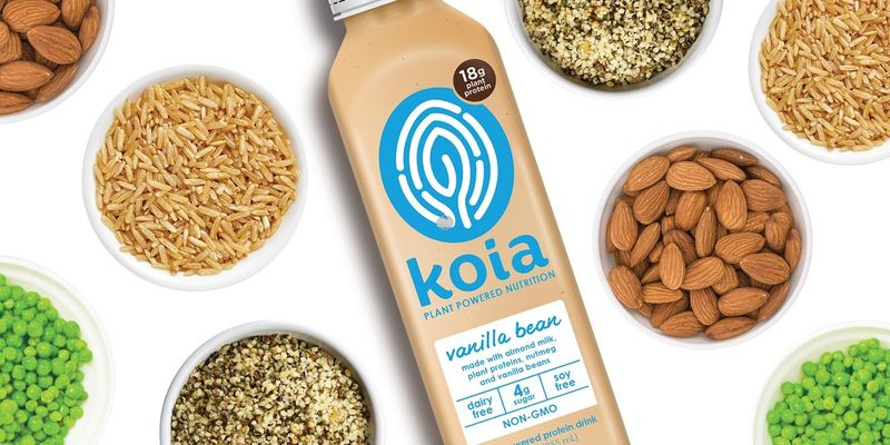 Plant-Powered Protein Drinks