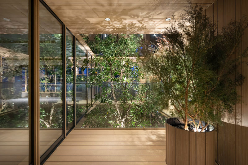 Timber-Wrapped High-Rise Facades