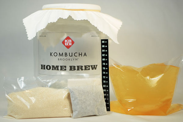 Kombucha Tea Brewing Sets