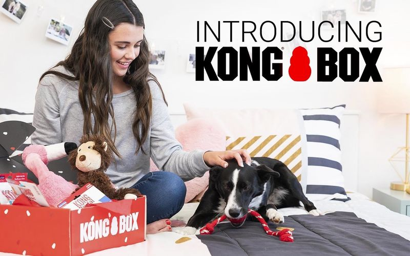 Durable Dog Toy Subscriptions