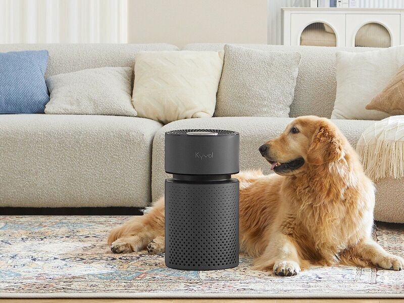 Washable Component Air Purifiers