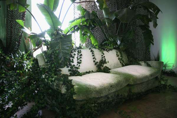 Junglefied Home Decor