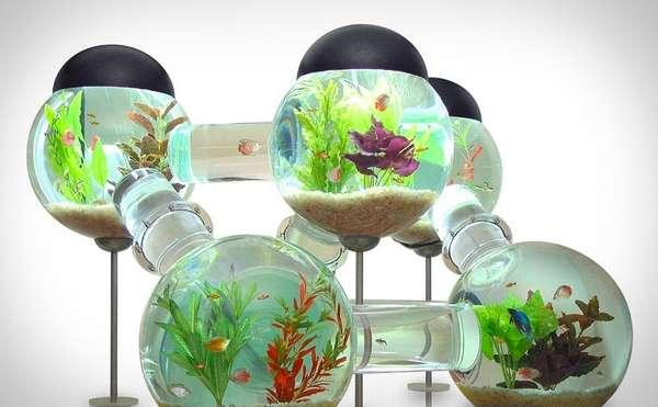 Tabletop Ecosystems. Maze Like Fish Tanks