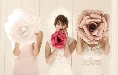 Rose-Themed Digital Galleries