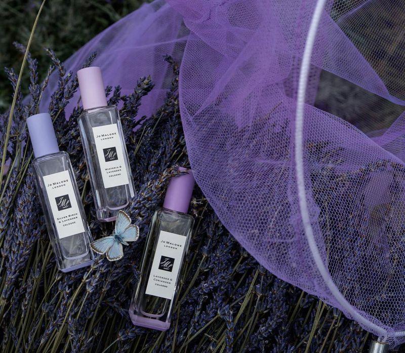 Unusual Lavender Fragrances