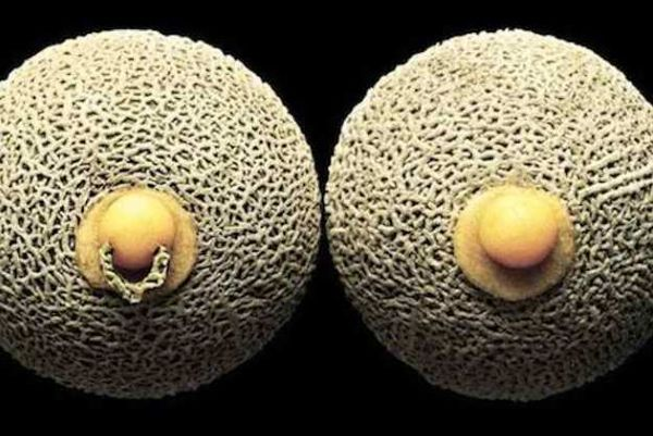 Erotic Food Photography