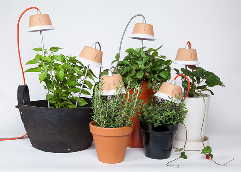 Urban Grow Lights