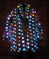 Light Up Coat