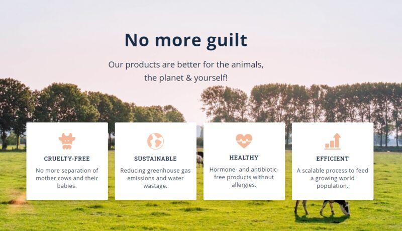 Fermented Nutrient-Rich Dairy