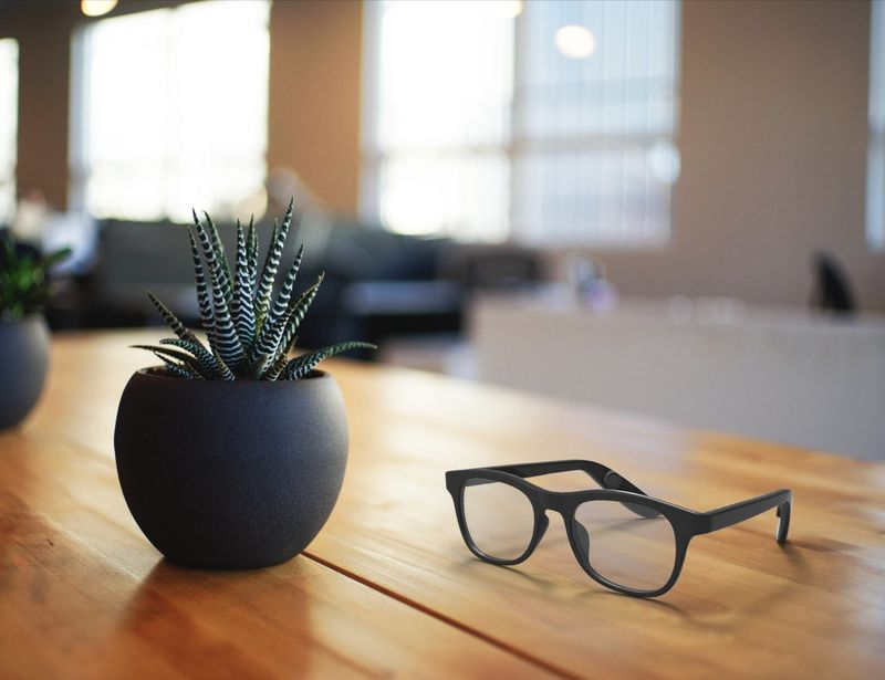 Voice Assistant Smart Glasses