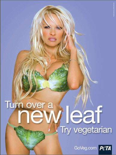 Vegetable Bikinis