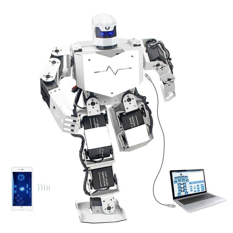 Multifunctional Humanoid Robot Toys