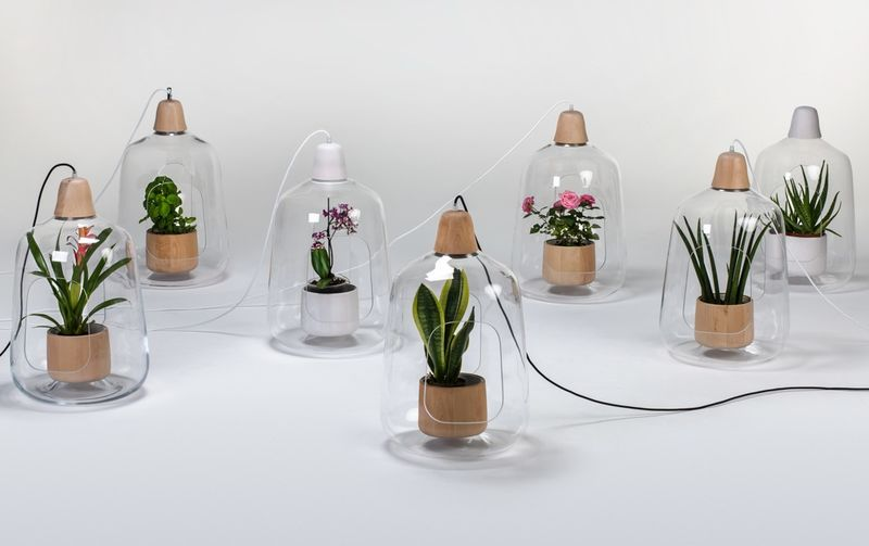 Plant-Integrated Hanging Lights
