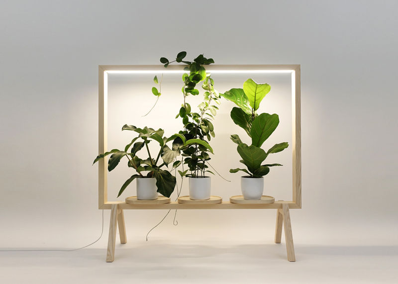 LED-Integrated Wooden Plant Frames