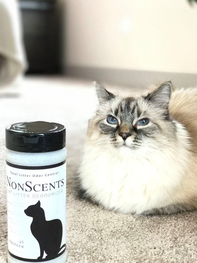 Kitty Litter Odor Eliminators