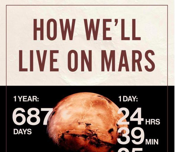 Livable Planet Infographics