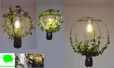 living lamp the green light grows its own plant. Black Bedroom Furniture Sets. Home Design Ideas
