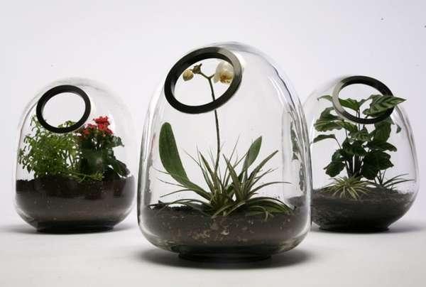 Globular Mini-Gardens