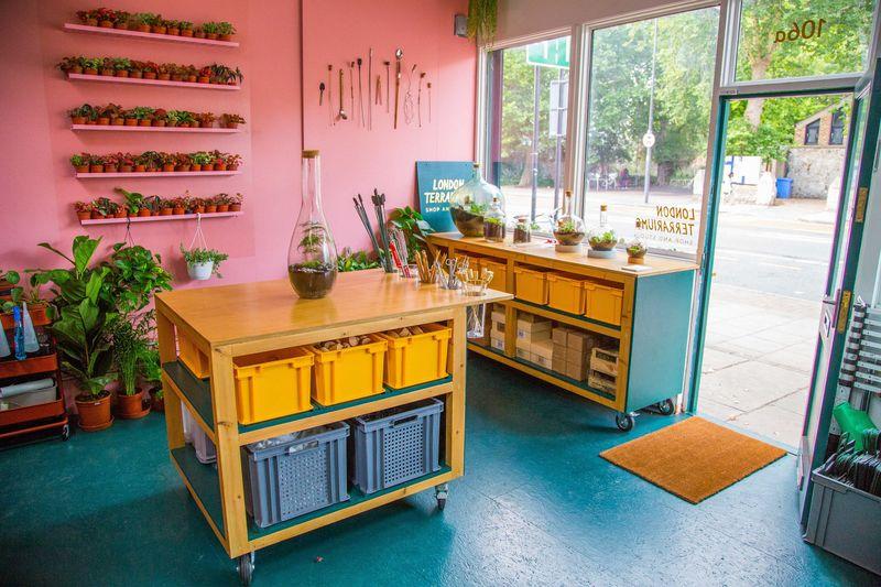 Social Media-Inspired Terrarium Shops