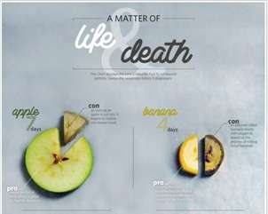 Fruit-Decaying Infographics