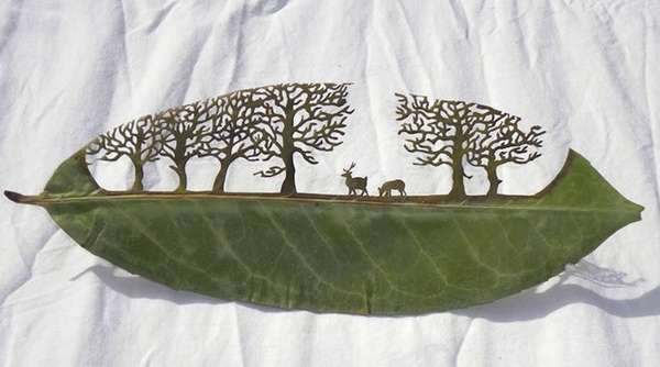 Cutaway Leaf Art