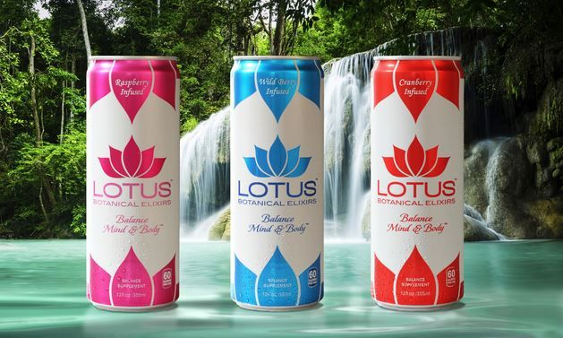 Balanced Botanical Beverages