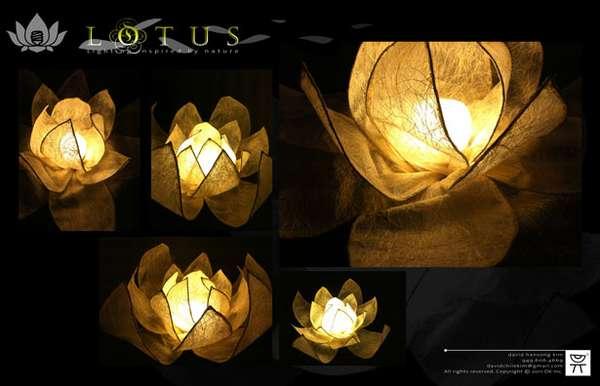 Far East Flower Lights