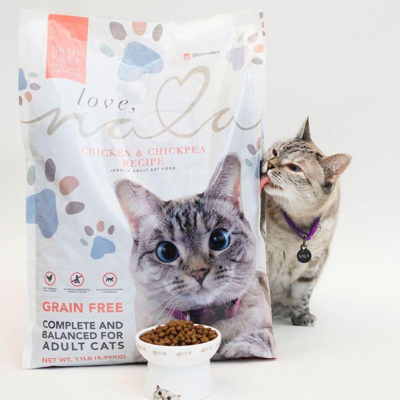 Social Media Cat Food Brands