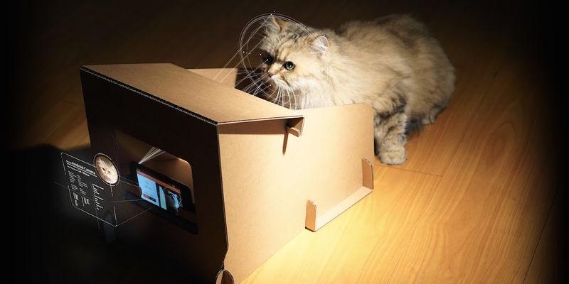 Cardboard Cat Feeders
