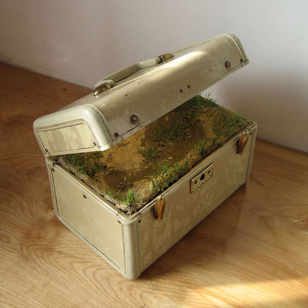 Vintage Luggage Landscape Displays