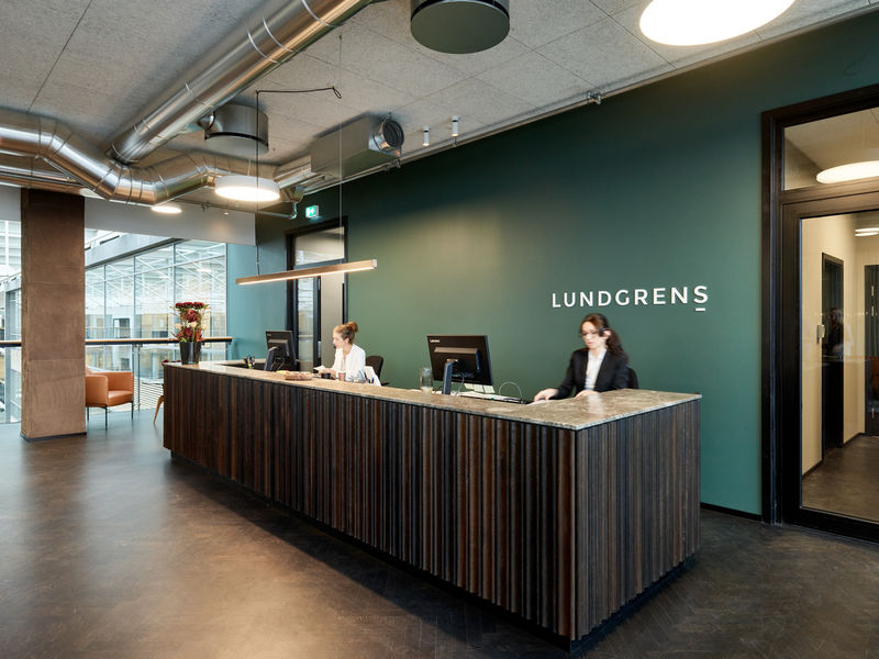 Luxuriously Simple Law Firms Lundgrens