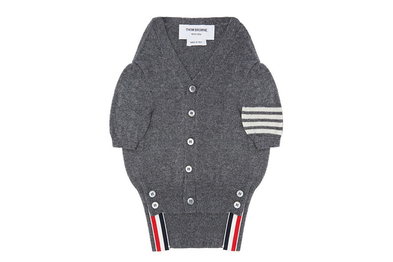 Dapper Designer Dog Clothes