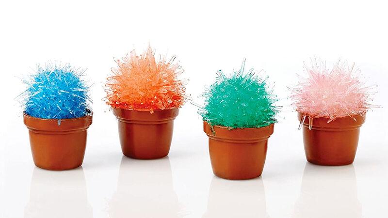 Crystalline Cactus Cultivation Kits