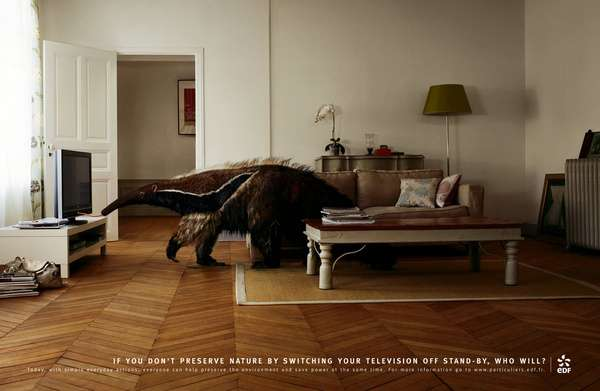 If You Don't Preserve Nature, Who Will? Unique Ads