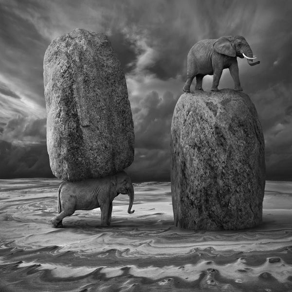 Monochromatic Manipulated Fantasy Photos