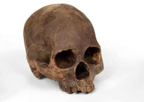 Human Cranium Confections