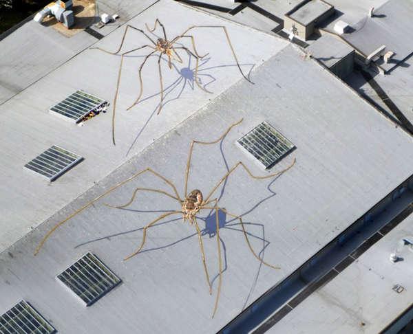 Monstrous Spider Murals