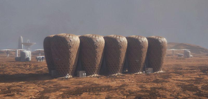 Bamboo Martian Colony Concepts