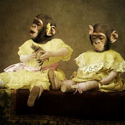 Humorous Humanimal Portraits