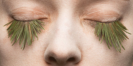 Grass Eyelashes
