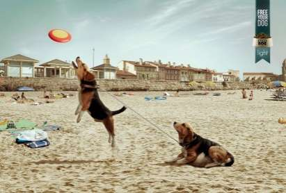 Fat-Free Dog Ads