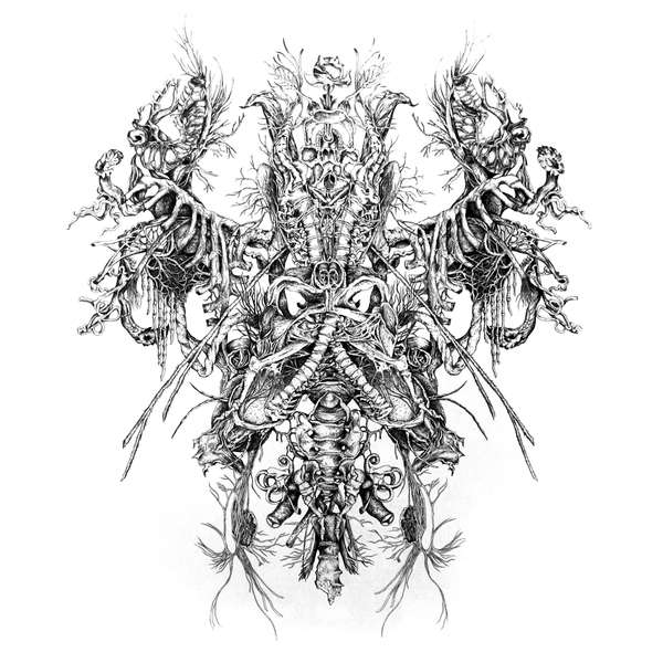 Intricate Human Inside Illustrations