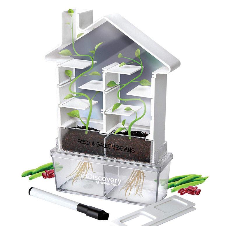 See-Through DIY Botany Kits