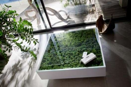 Plant Infused Coffee Tables
