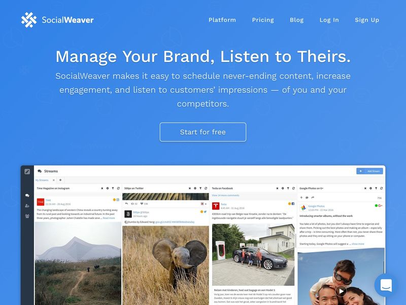 Competitor Social Media Platforms