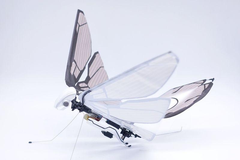 Nature-Inspired Biometric Drones