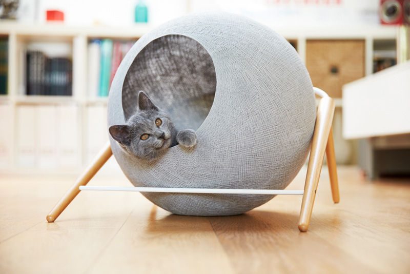 Cozy Cat Cocoons