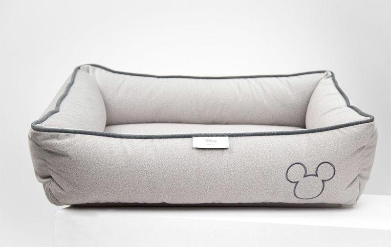 Celebratory Cartoon Dog Beds
