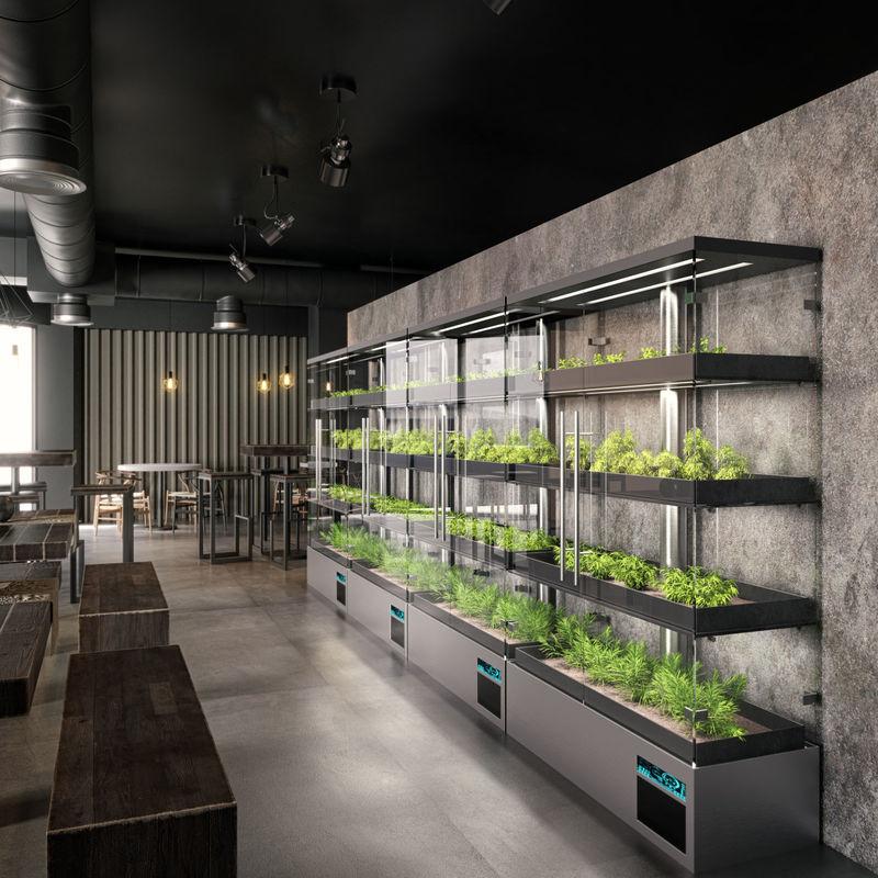 Automated Urban Micro Farms